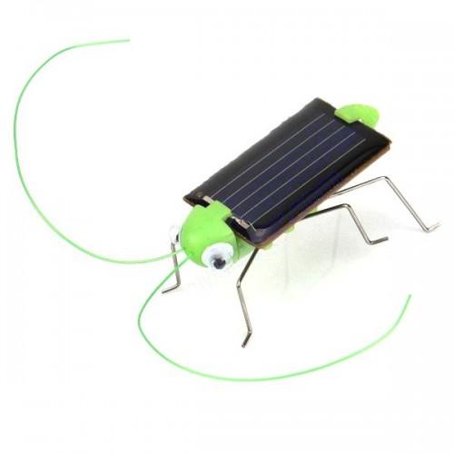 Цвіркун із сонячною панеллю
