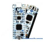 Nucleo F303K8 STM32F303K8T6
