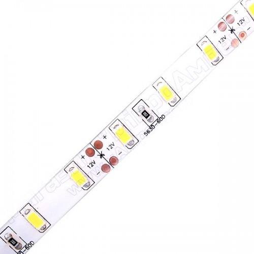 LED стрічка холодно-біла 5630-60 IP65