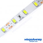 LED стрічка холодно-біла 5630-60 IP20